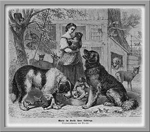 Adiestramiento y educación canina, qué son y en qué se diferencian.
