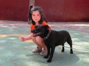 adiestramiento niños y perros valencia