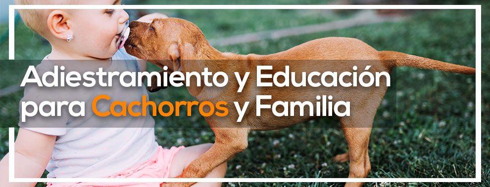 seminario cachorros y familia Eurekan