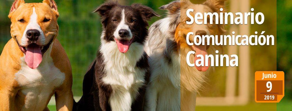 seminario comunicación canina valencia